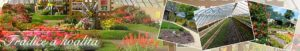 Zájezd na Zámeckou zahradu Čimelice